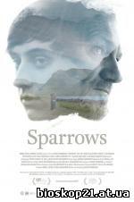 Sparrows (2016)